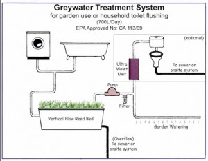 greywater3